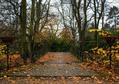Friedhof Ohlsdorf im Regen