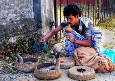 Schlangenbeschwörer, Sri Lanka